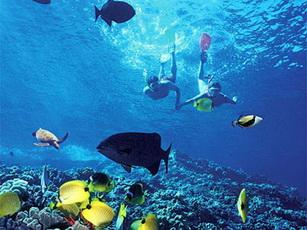 baliwah_snorkeling_bali